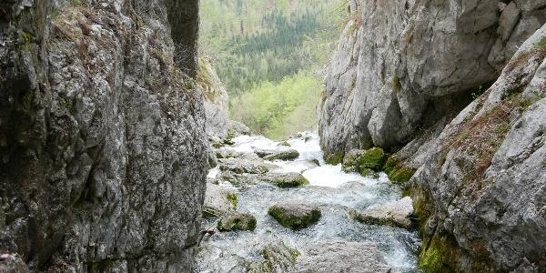 Blick von der Soča-Quelle talauswärts
