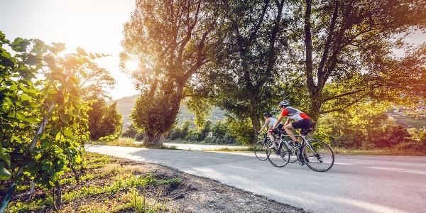 Rhone Route bei Sierre