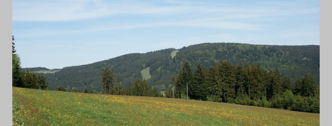 Pröller von Maibrunn am Weg nach Klinglbach