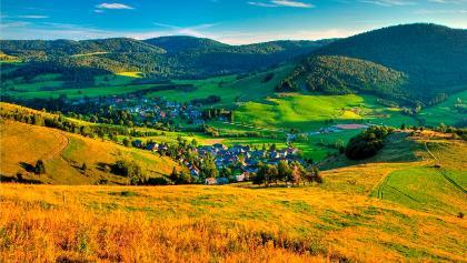 Schwarzwälder Genießerpfad Berauer Hochtal Steig, oberhalb vom Scheibenfelsen. Foto Erich Spiegelhalter