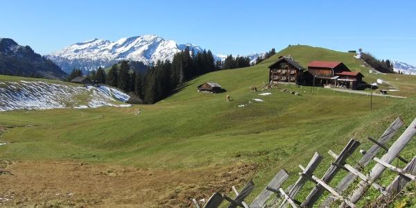 Berghaus Scära