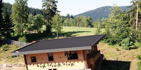 Haus am Kopf im WaldWipfelWeg-Gelände