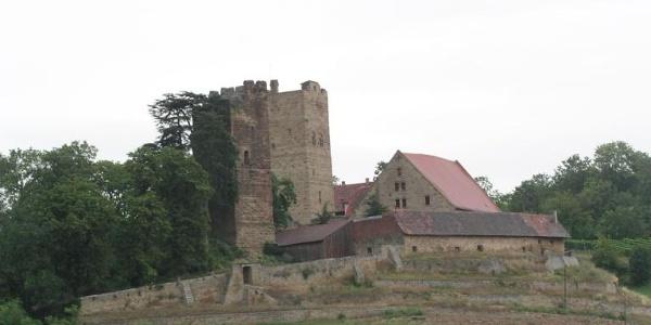 Burg Neipperg bei Brackenheim
