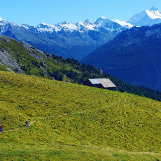 Rinderhütte-Jeizinen