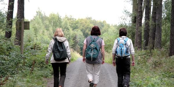 Wanderer bei Bad Lausick
