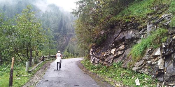 Fahrstraße führt direkt zur Hütte