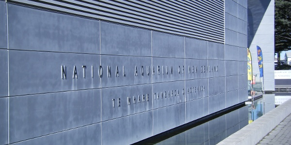 National aquarium of New Zealand