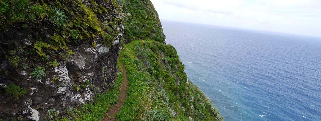 Die Vereda do Calhau schlängelt sich entlang der steil abfallenden Küste.