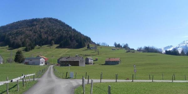 Bütscheln Richtung Hittisberg