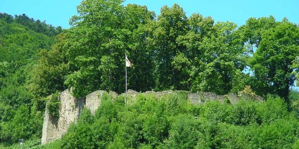 Zwischen dichtem Wald blitzt die Ruine Neuwolfstein hervor.