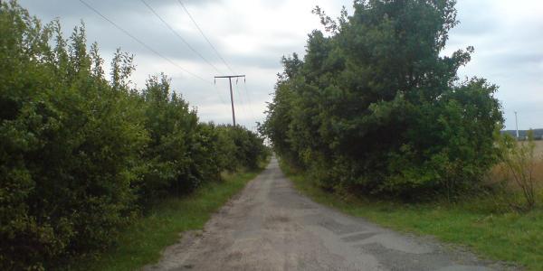Zwischen Bittkau und Arneburg
