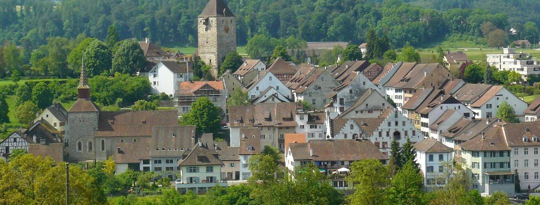 Blick in die Schweiz auf das mittelalterliche Städtchen Kaiserstuhl