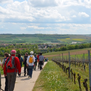 Blick nach Klein-Winternheim