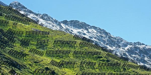 Im Hintergrund Neuschnee auf dem 2396m hohen Kreuzjoch