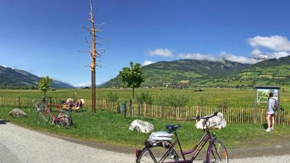 "Bike island ""Schlangenbaum"" directly on the Tauern bike path"
