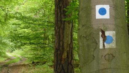 Der blaue Punkt auf weissem Grund markiert den 66-Seen-Wanderweg