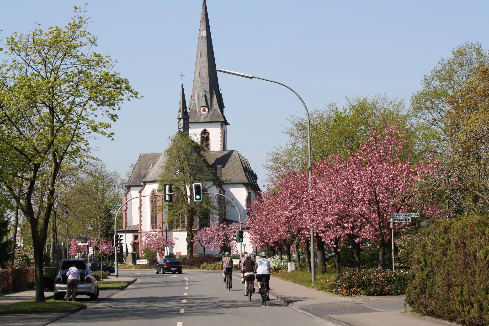 Westenholz