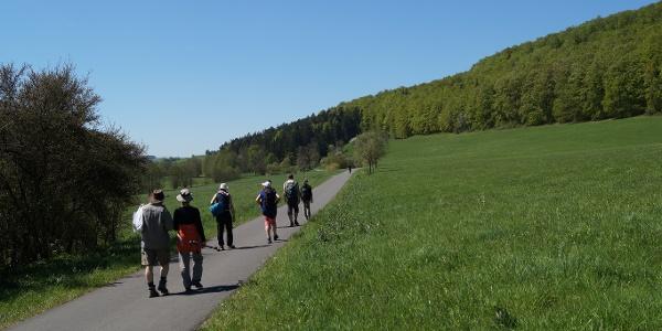 Auf dem Sülzetal-Radweg Richtung Sülzfeld