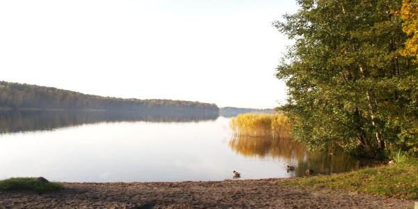 Der See von der nördlichen Badestelle