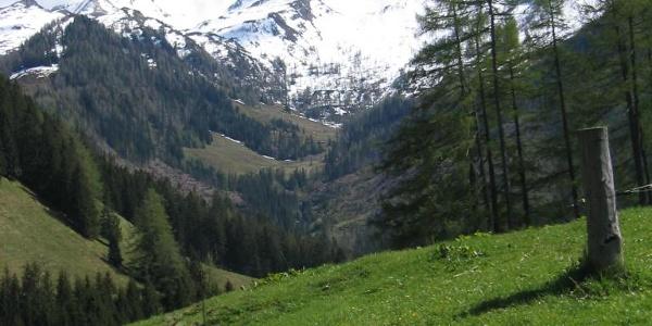 Ausblick Gaisbachtal