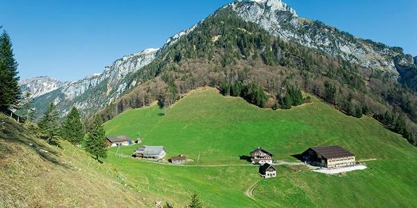 Vielleicht der schönste Bergbauernbetrieb in den Urner Alpen: Furggelen