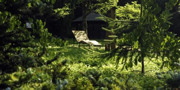 Liegebank und Schutzhütte im Arboretum