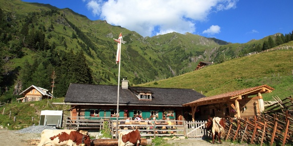 Kreealm-Kreehütte