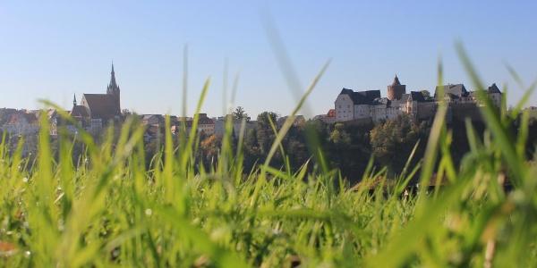 Leisnig Panorama