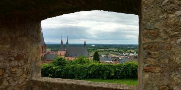 Auf der Burgruine Landskrone mit mit Blick auf Rhein