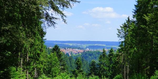 Blick von der Forstmeister-Preu-Hütte nach Freudenstadt