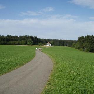 Bei Königsfeld