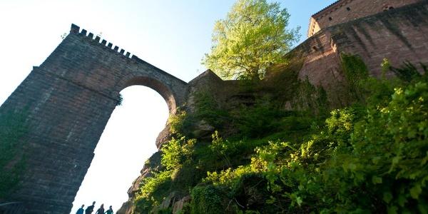Tor zur Trifels