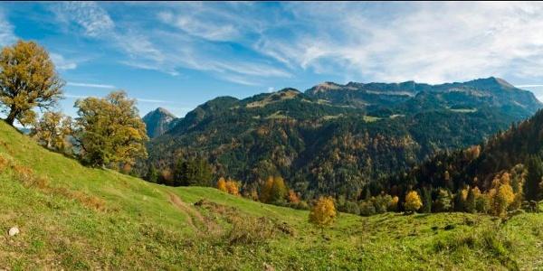 Panorama Waldalpe