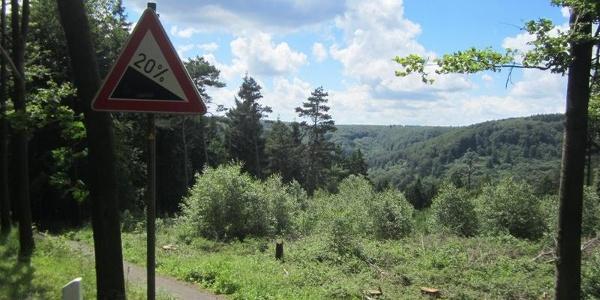 Im wilden Auf und Ab durch die Wälder des Teutoburger Waldes