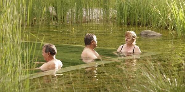 Naturschwimmteich in der Natur-Therme Bedernau
