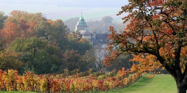 Katzelsdorf Kloster