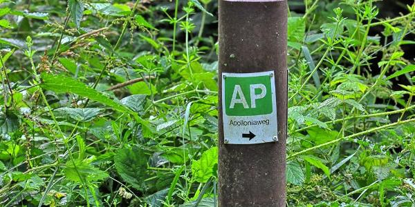 Markierung des Apolloniaweg