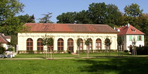 Orangerie im Luisium