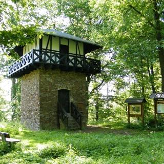 Der Limesturm auf dem Wingertsberg ist die Rekonstruktion eines römischen Wachturms.