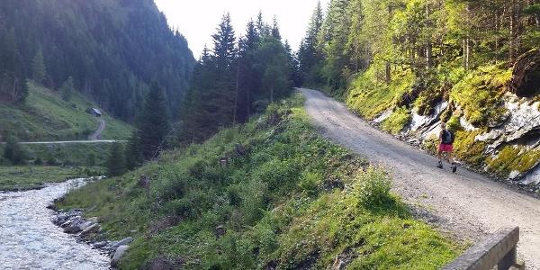 Forstweg bis zur Schliereralm