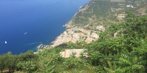Blick voraus auf Riomaggiore