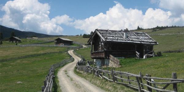 Alpe di Barbiano