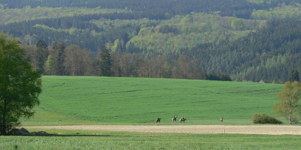 Blick auf Idarkopf