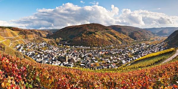 """Blick vom Sonderberg, ausgezeichnet zur """"Schönsten Weinsicht der Ahr 2016"""""""