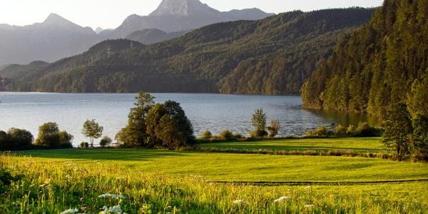 Blick über den Weißensee