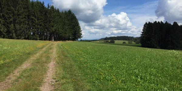 Weg zwischen Wanderheim und Hünersedel