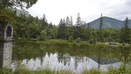 Spiegelungen im Grünen See
