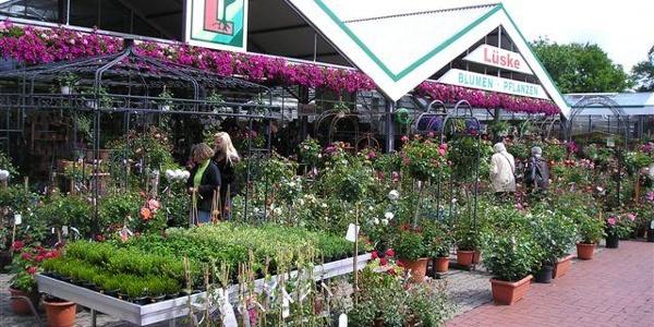 Gemüse- und Pflanzenhof Lüske