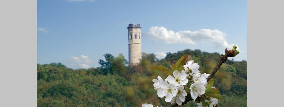 Aussicht vom Thüringer Drei-Türme-Weg auf den Paulinenturm