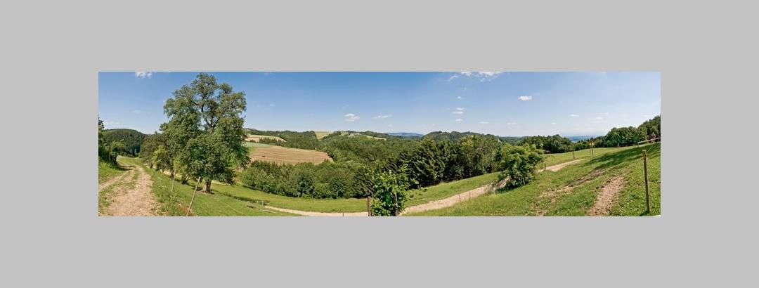 Panoramablick Fürstenberger